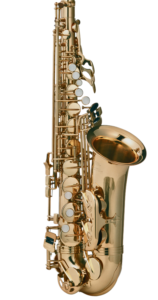 Beginners guide to Saxophone: Body